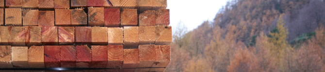 Sawn softwood from Perthshire Timber Co.