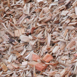 Wood Chips peeled (ie no bark) and unpeeled (some bark).